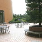 帝京科学大学(photo10)