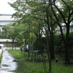未来大学(photo14)