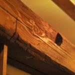 あさり食堂(photo07)